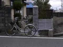 20091123e.jpg