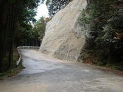 20091204a.jpg