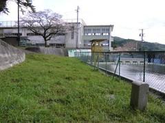 20100326g.jpg