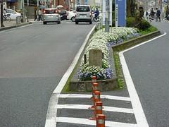 20100407a.jpg