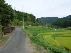 20100930d.jpg