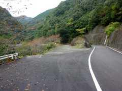 20101114f.jpg