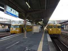 20110108c.jpg
