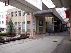 20110110a.jpg