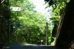 20110518d.jpg
