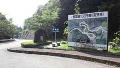 20110630b.jpg