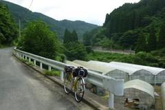 20110731c.jpg